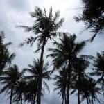 【グアム 5】グアム島半日ツアー 自由の女神~太平洋戦争博物館