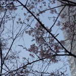 感激!藤澤ノリマサ コンサート