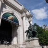 【New York, NY! 25】自然史博物館≠ナイトミュージアム