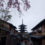 【京都小紀行 ひとり旅5】三年坂・二年坂の桜の景色