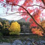 玉堂美術館と紅葉